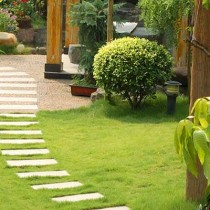 Gardening Services in North Down