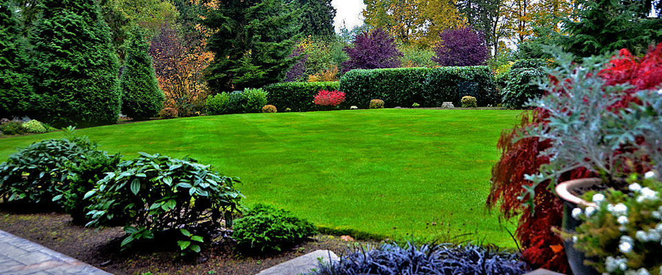 Moulds gardening services gardening services in belfast for Home gardening services